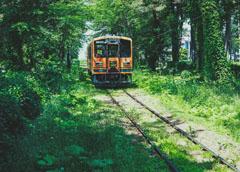 電車をよく使うならSuica付帯が便利でお得!おすすめカード5選