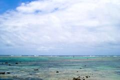 JAL「どこかにマイル」なら6,000マイルで沖縄や北海道にも行ける!