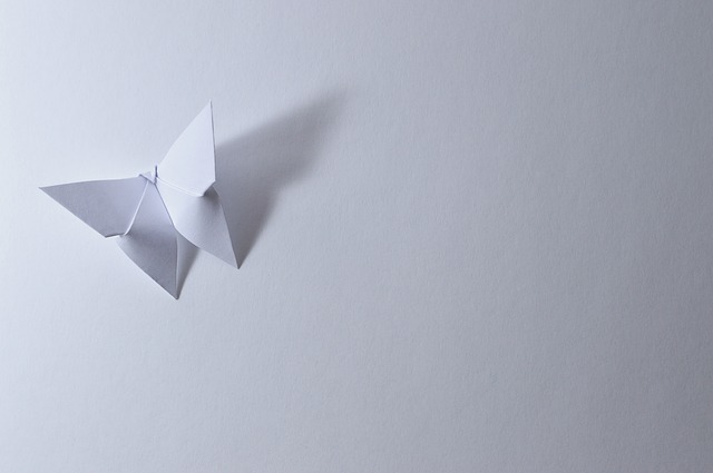 Origami Payの魅力とは?仕組みや加盟店・これからの普及について解説