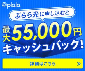 月々のインターネットが安く!更に最大55,000円キャッシュバック!