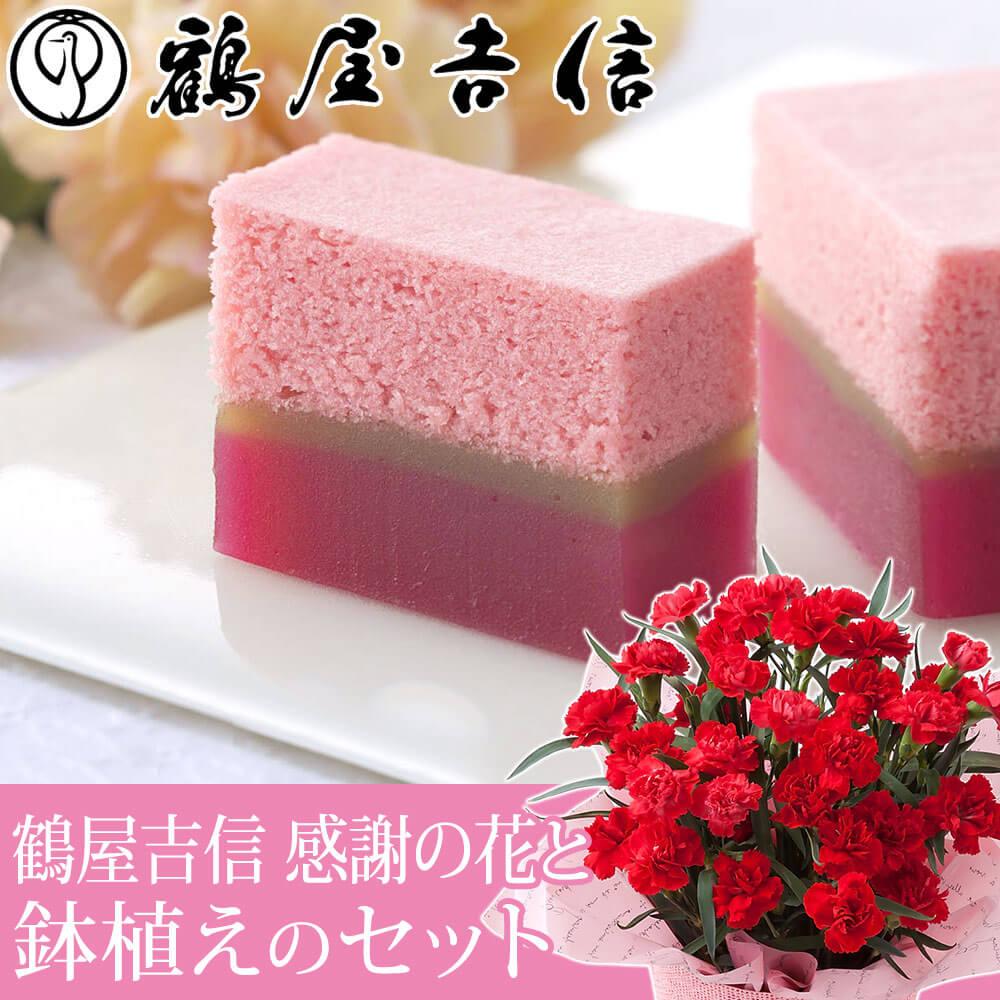 【母の日フラワーギフト】鉢植えセット「鶴屋吉信 感謝の花」